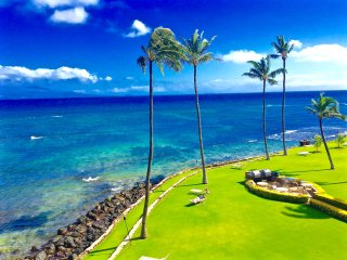 Remodeled oceanfront condo with 180* views, Wailuku