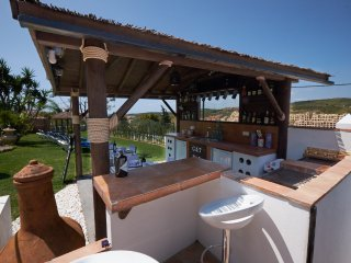 Pool side bar and BBQ area