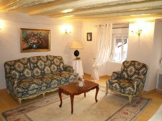 Appartement de charme Hortensia à Thann en Alsace