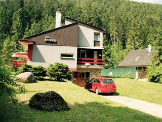 Beautiful house in Low Tatras, Demanovska Dolina