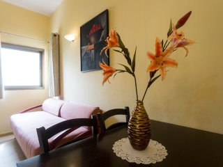 Comfort 1 BDR  Apt. near the sea, Ben Yehuda st.68, Tel Aviv