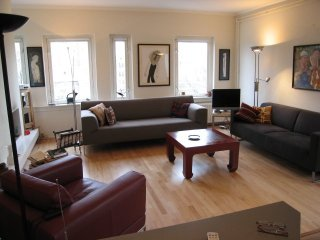 Beautiful, Spacious, Sunny apt in Ctr (with lift) and fireplace
