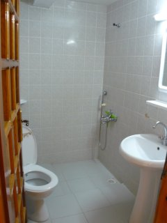 bathroom - fully tiled, walk in shower, toilet and full size basin