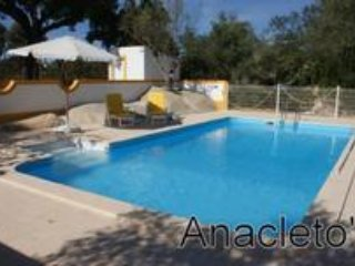 Marvellous country house with swimming pool, Arraiolos
