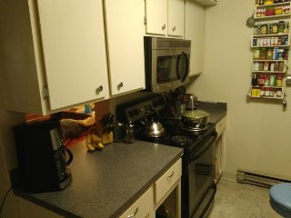 Private Room, Minutes to Old Town & CSU, Fort Collins