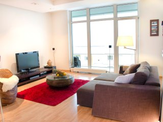Spacious apartment in central Vilnius