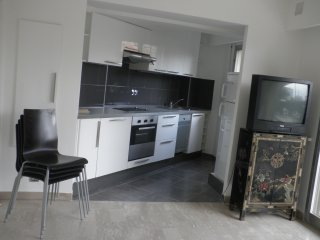 ALL RENOVATED FLAT 8MNS PALAIS, Le Cannet