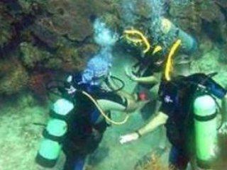 Scuba Diving/activities in the area