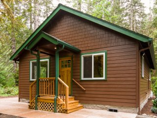 "New ""quaint"" McKenzie Riverfront Cabin, Blue River"