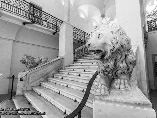 LE CASE DELLA STE - SANTA CATERINA 1, Genoa