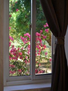 first floor bedroom's view