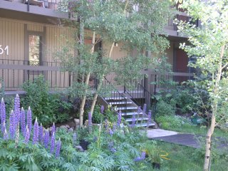 On the Mountain-2bd/2ba- Beautiful yet reasonable, Breckenridge