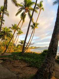 This is why we love Maui!!!  Kama'ole Beach...a.k.a. Charley Young.