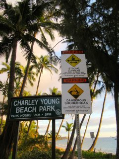 Charley Young beach, literally across the street!
