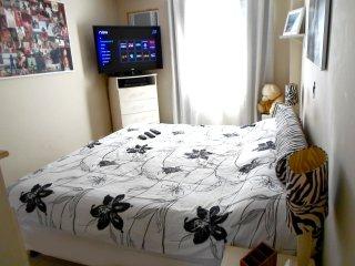 Rent room suite near Rio de Janeiro the Olympics