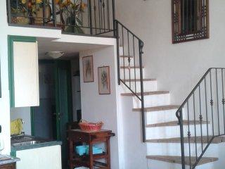 Affittasi appartamento zona centrale di Pitigliano