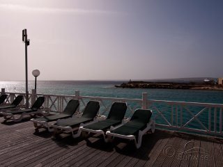 Diving Port Bonaire A101 - with sea view and communal pool