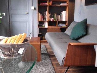 Appartement cosy deux pièces, à Paris Montparnasse