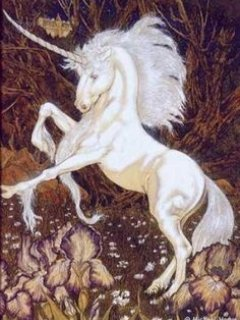 The unicorn was, perhaps, the most adored of all medieval beasts, especially by women whose virtue i