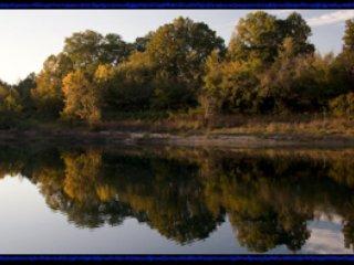 La arbolada banco en el río Little Buffalo. Tenemos 3/4 de milla de la orilla del rio privado.
