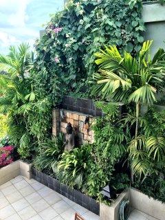 Lush foliage on the main level