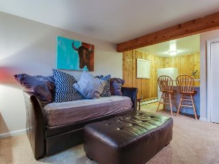 Cozy mountain condo in West Vail perfect for couples or small families!