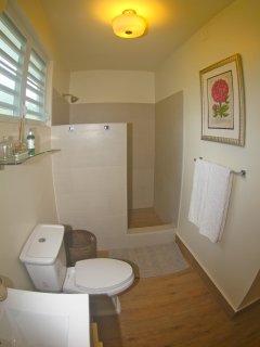 Master Bathroom, step in shower, hair dryer provided, first aid kit, sun block, bug spray etc