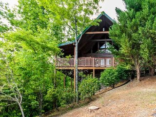 Whisper Mountain  Hot Tub Privacy Mountain View Pets WiFi  Free Nights, Gatlinburg