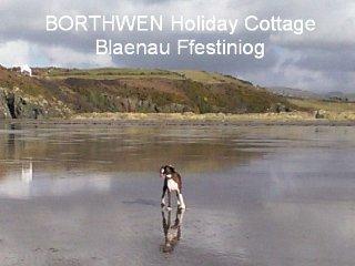 Borthwen Holiday Cottage, Blaenau Ffestiniog
