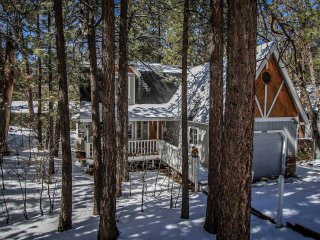 1209-Prime Pines, Big Bear Region