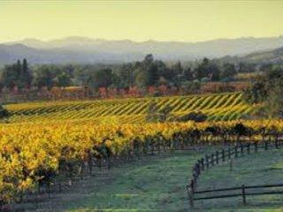 Juanitas Casita: 1BR Sonoma Cottage w/ Hot Tub & Garden–Close to Wineries