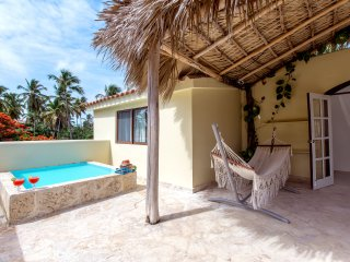 Beach House 11guests Jacuzzi, Bávaro
