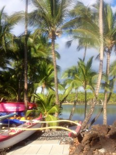 Rent an outrigger canoe at the Owners Beach Club
