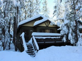Tiny Mighty Cabin: Pet-Friendly Retreat with Spa!