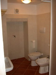 The modern bathroom with shower