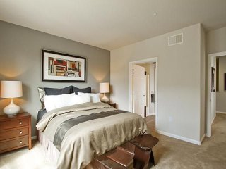 STUNNING AND FURNISHED 1 BEDROOM APARTMENT IN SAN BRUNO, San Bruno