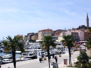 Amazing View on Rovinj's Port, Rovigno