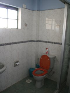 spacious blue-room bathroom with shower cabin, toilet, sink, cabinet, wall mirror, etc