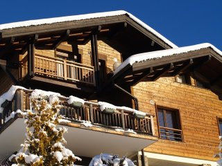 Chalet Tressud - with outdoor jacuzzi in Les Gets