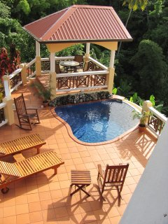 Upper deck, gazebo, gas grill and plunge pool