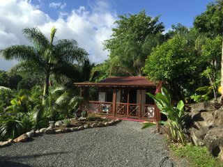 L'Ilot Palmiers - bungalow 'MABOUYA'