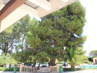 Magnífica villa en Novelda