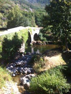 El río Sil a su paso por Palacios del Sil