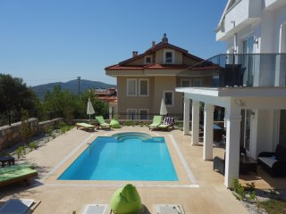 Luxury villa, stunning views of Babadag Mountin