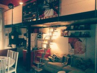 loft accogliente in zona centrale a Torino