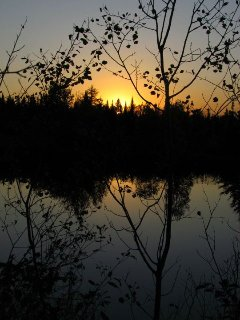 Sunset from the pond.