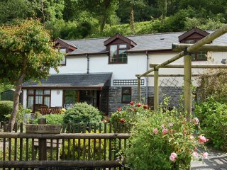 RIVERSIDE COTTAGE FAMILY RETREAT, Abergynolwyn