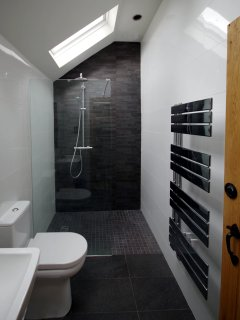 Wet Room with vaulted ceiling