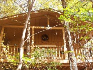 Tree Haus, Helen