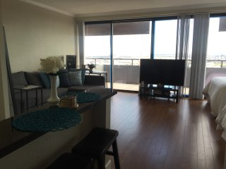 Downtown Houston Penthouse Studio Apartment